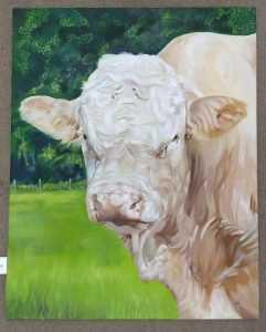 Graham Davis 'Bull' 1